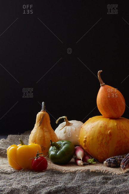 Rich harvest from freshly picked natural organic vegetables pumpkins, paprika pepper, tomato and radish on a canvas table against black background, copy space. Vegetarian healthy food concept.