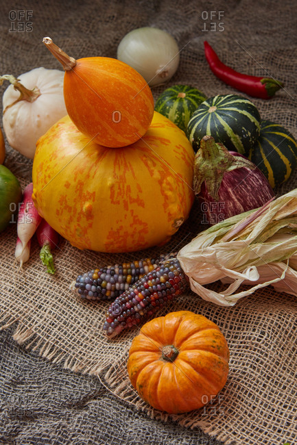 Homegrown harvest from freshly picked natural organic vegetables pumpkins, chili pepper, corn ears on canvas textured background, copy space. Vegan healthy food concept.