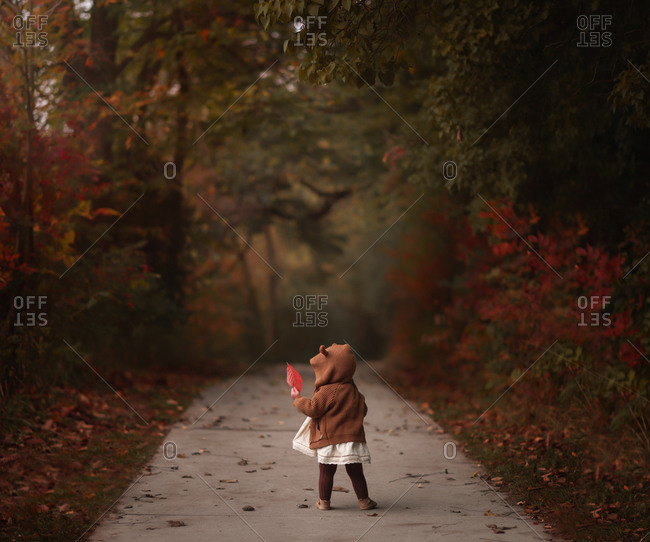 Faceless portrait of little girl standing on a path, surrounded by fall foliage