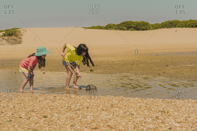 Sisters fishing crabs in sea while standing against clear sky during summer