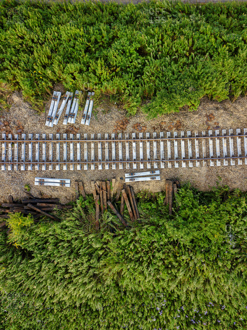 Aerial view of green bushes growing along empty railroad tracks