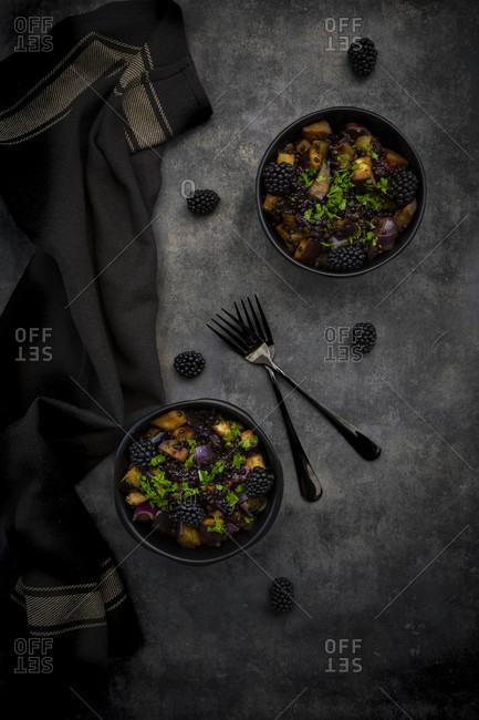 Studio shot of two bowls of vegetarian salad with eggplant- Beluga lentils- Spanish onion- blackberries- vinaigrette and parsley