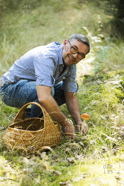 Man collecting mushroom in forest on sunny day