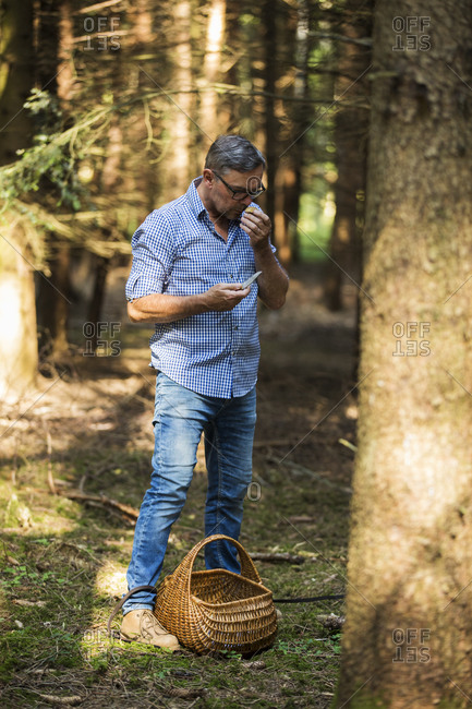Man tasting mushroom while standing in forest on sunny day