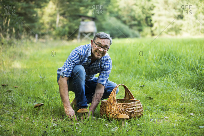 Happy mature man picking up mushroom while crouching on grass in forest