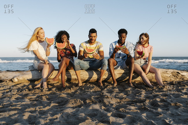 Friends sitting on log while eating watermelon at beach during sunny day