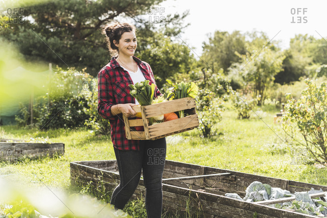 Smiling young woman carrying wooden crate with vegetables in community garden
