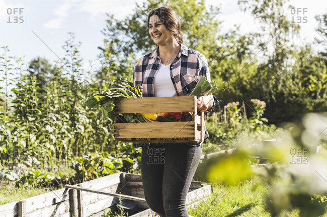 Smiling young woman carrying vegetables in wooden crate at community garden