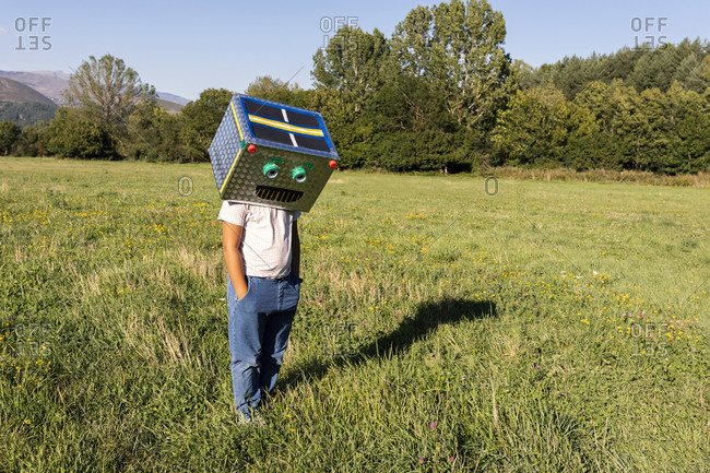 Boy with smiling cardboard box on face standing in meadow