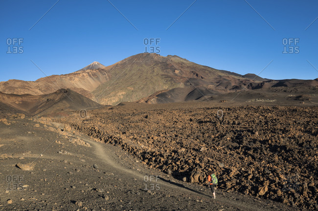 Hike in the volcanic landscape around the montana de la botija with a view of the volcanoes picot del teide (3718 m) and picot viejo (3135 m), el teide national park, unesco world heritage, tenerife, canary islands, Spain