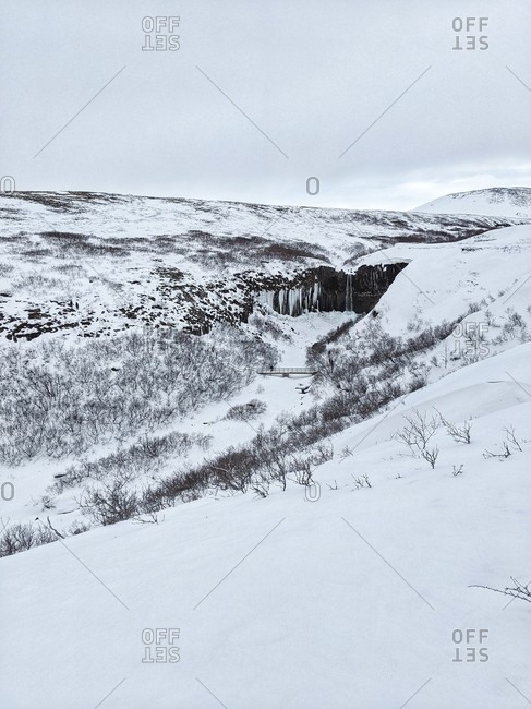 View of the waterfall svartifoss, iceland, located in the valley of the vatnajokull national park