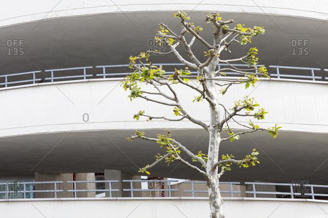Parking garage, karstadt, facade, architecture, spring, braunschweig, lower saxony, Germany, Europe