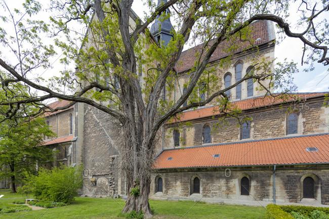 Riddagshausen monastery, monastery garden, architecture, house facade, braunschweig, lower saxony, Germany, Europe