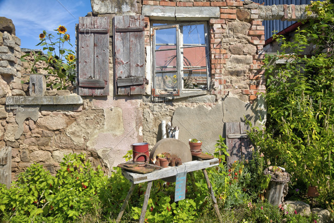 House facade, sunflowers, window, grindstone, garden, still life, wolfram-eschenbach, franconia, Bavaria, Germany