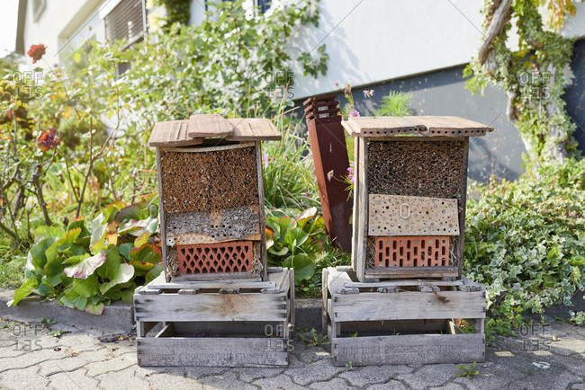 Two insect hotels on wine boxes in front of the garden and house