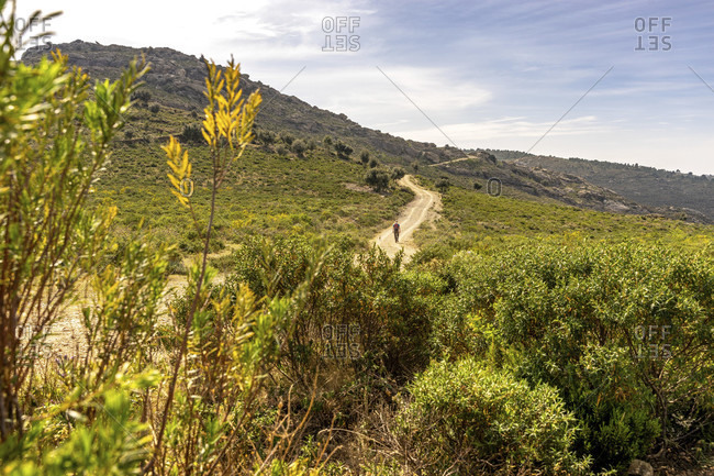 Europe, spain, catalonia, girona, alt emporda, port de la selva, hikers on the serra de rodes plateau