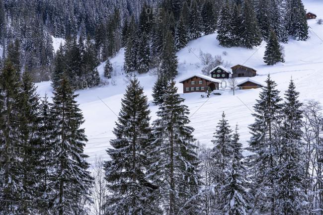 Europe, austria, vorarlberg, montafon, rätikon, gauertal, rustic houses on a snowy slope in the gauertal