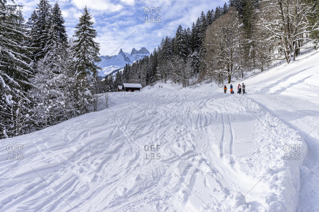 Europe, austria, vorarlberg, montafon, raetikon, gauertal, winter hikers on the ascent along the toboggan run with a view of the three towers