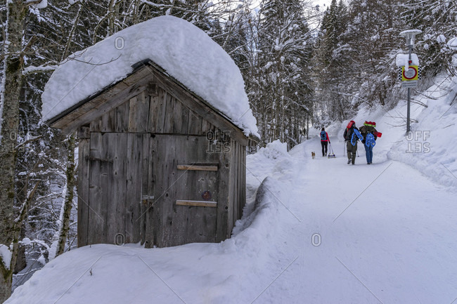 Europe, austria, vorarlberg, montafon, rätikon, gauertal, hikers on a winter hiking trail in the gauertal on the way to the lindauer hutte