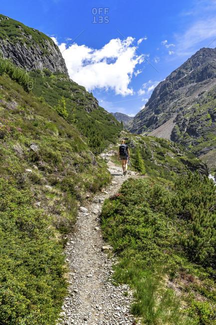 Europe, austria, tyrol, otztal alps, otztal, gries im sulztal, mountain hiker in the ascent to the winnebachsehutte