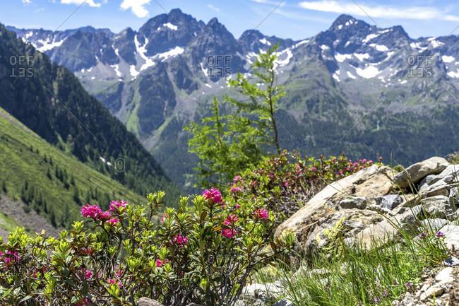 Europe, austria, tyrol, otztal alps, otztal, gries im sulztal, view of the sulztalkamm on the ascent to the winnebachsehutte