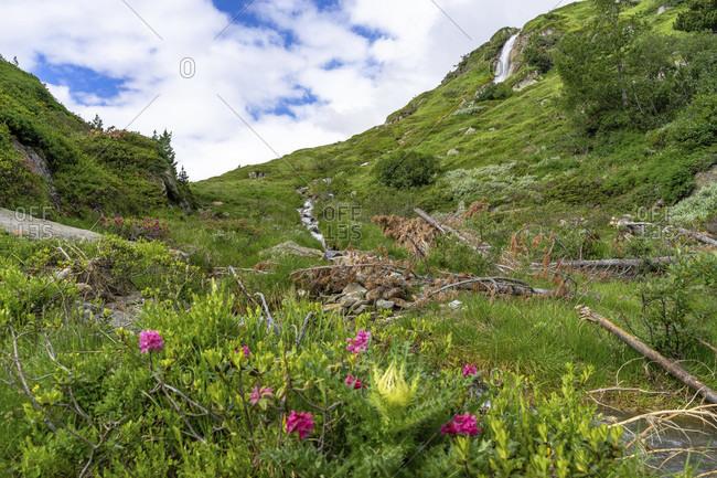 Europe, austria, tyrol, otztal alps, otztal, obergurgl, idyllic landscape in the rear otztal on the way to the ramolhaus
