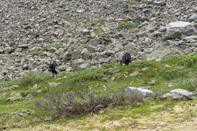 Europe, austria, tyrol, otztal alps, pitztal, plangeross, mountain hikers watch a marmot