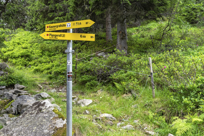 July 14, 2019: europe, austria, tyrol, otztal alps, pitztal, plangeroß, signpost in the mountain forest at plangeroß