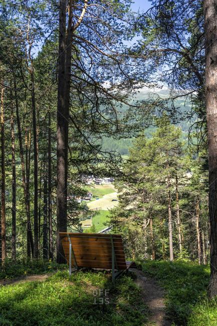 Europe, austria, tyrol, otztal alps, otztal, break area with seating in the mountain forest above solden