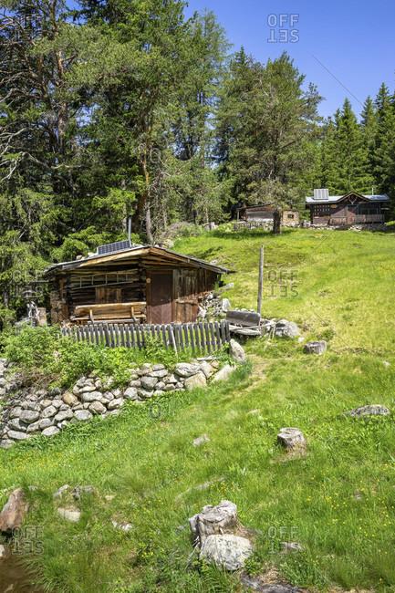 Europe, austria, tyrol, otztal alps, otztal, unmanaged alp in the mountain forest between niederthai and längenfeld