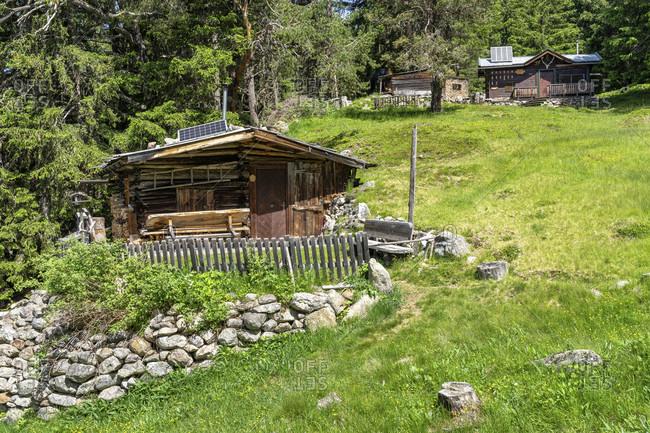 Europe, austria, tyrol, otztal alps, otztal, alpine pastures in the mountain forest between niederthai and längenfeld