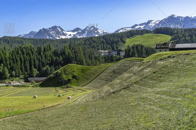 Europe, austria, tyrol, otztal alps, otztal, freshly mowed mountain slopes in niederthai