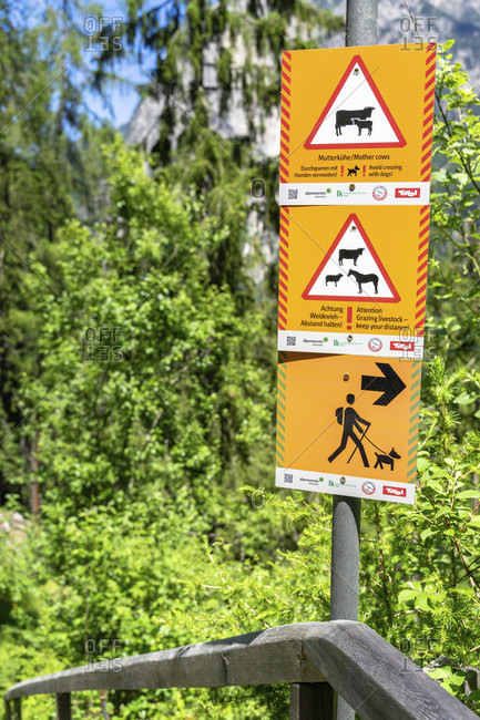 June 18, 2019: europe, austria, tyrol, otztal alps, otztal, warning sign on a cow pasture
