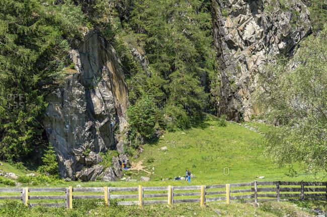 Europe, austria, tyrol, otztal alps, otztal, oberried climbing garden