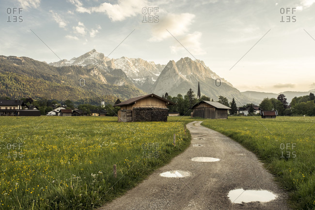 Path leads through a spring meadow with a view of the zugspitze massif