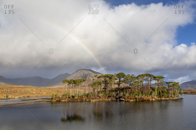 Twelve pines island, derryclare lough, county galway, connacht province, republic of ireland
