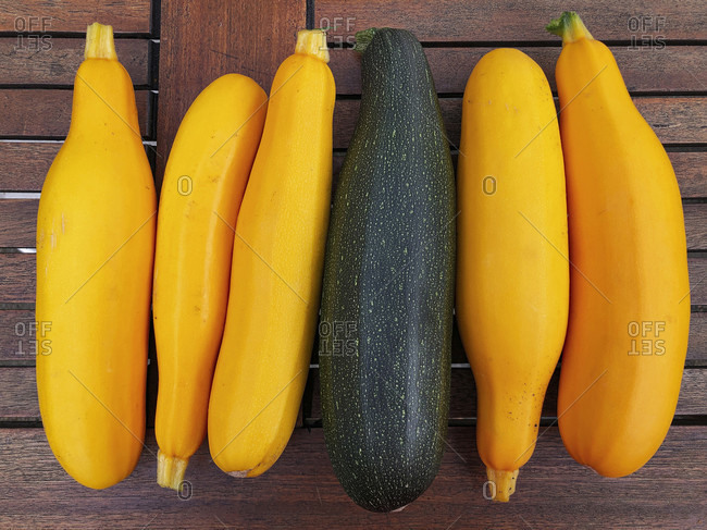 Zucchini, Vegetables, Harvest Time, Autumn, Own Harvest