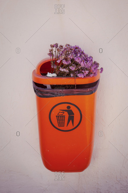 Waste, waste management, everyday life, bouquet, flowers
