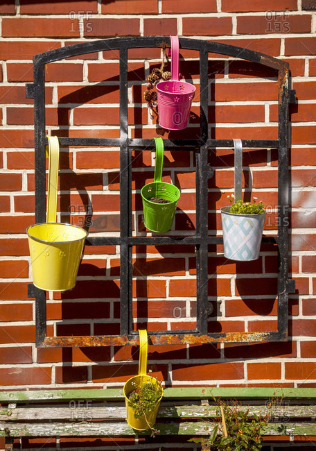 Urban gardening, flower pot, plants, sustainability