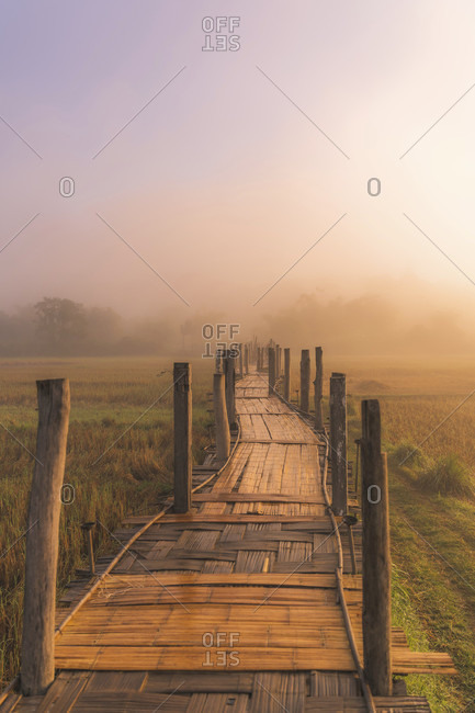 Thailand, morning mood. Bamboo walkway, way into the unknown