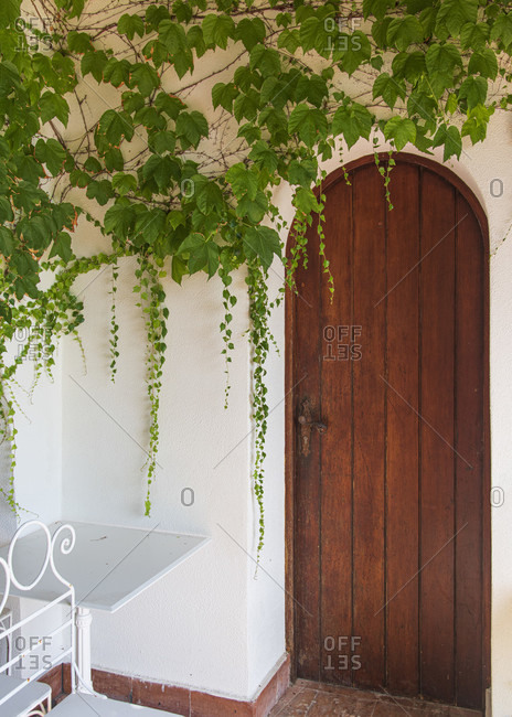 Sicily - Sunny impressions of the Aeolian Islands, Romantic wooden door with wine tendrils; Lipari.