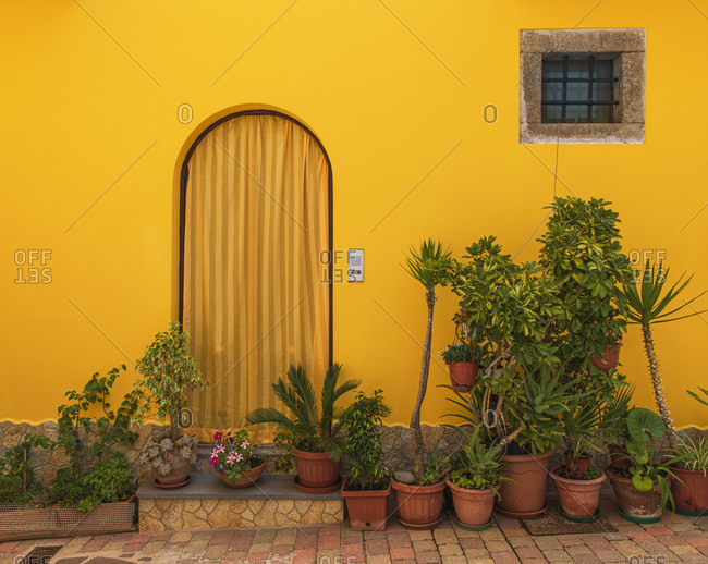 Sicily - Sunny impressions of the Aeolian Islands, houseplants in flower pots in front of a yellow facade, Lipari town.