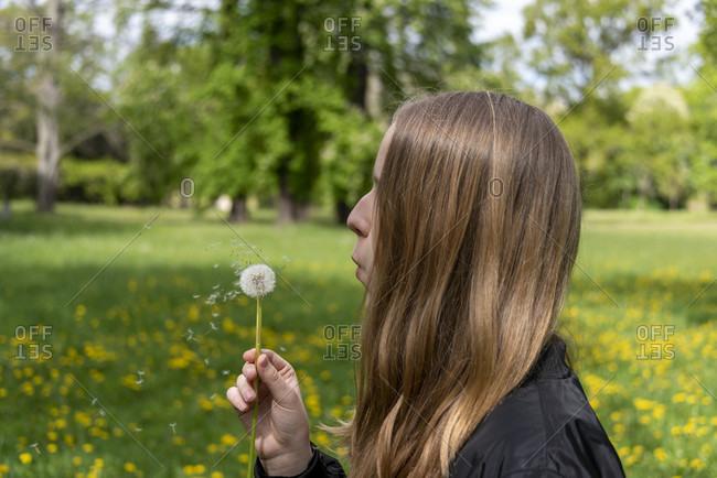 Schoolgirl wishing on a dandelion
