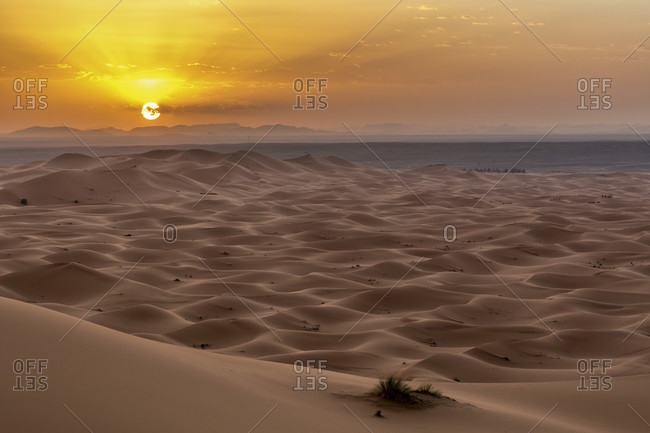 Sand dune desert at Erfoud, Sahara, Morocco