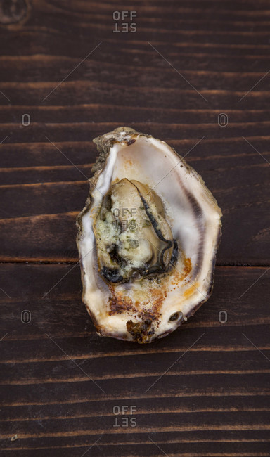 Oyster, gratin, delicacy, food preparation