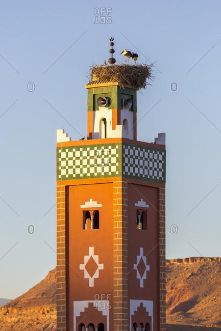 Minaret with nesting storks, Ait-Ben-Haddou, Ait Benhaddou, Morocco