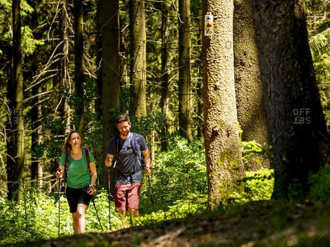 June 1, 2019: Hiking on the Zwealersteig, Biereck