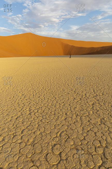 Dead Vlei, Sossusvlei, sand dunes, Namib desert
