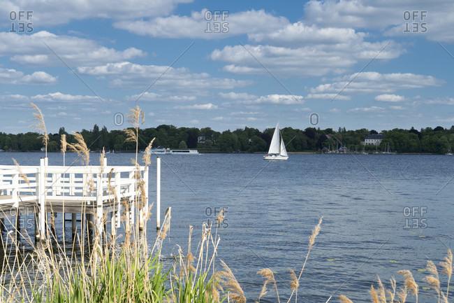 Berlin, Wannsee, shore, footbridge, reeds, sailing boat
