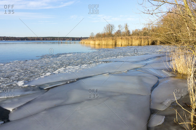 Berlin, Wannsee, ice floes on the bank, reeds